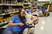 Service Dogs Improve Lives Of Autistic Children